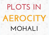 Best festival deals on Plots in Aerocity Mohali