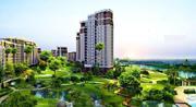 Buy Office Spaces in Dwarka,  Delhi